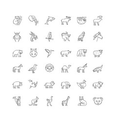 Wildlife pixel perfect linear icons set vector