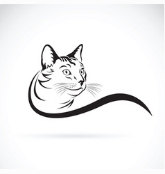 cat design on white background pet animal vector image vector image