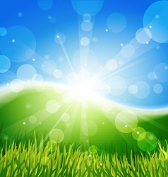 Meadow with sun and blue sky vector image