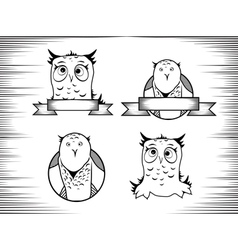 Crazy Owl vector image vector image