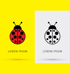 ladybug beetle vector image vector image