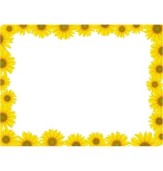 sunflower frame vector image vector image
