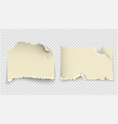 set design templates torn paper vector image