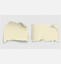 set of design templates torn paper vector image