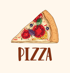 Slice or piece of appetizing delicious classical vector