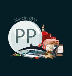 Vitamin pp b3 vector