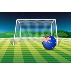 A soccer ball at the field with the New Zealand vector
