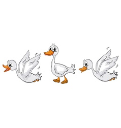 Ducks walking and flying vector