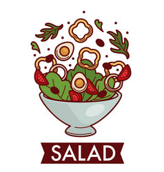 Salad dish cooking food ingredients vegetables and vector