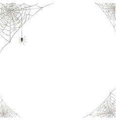 spider web halloween decoration hanging corner vector image