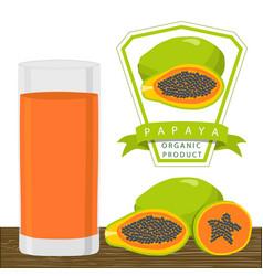 the theme papaya vector image vector image