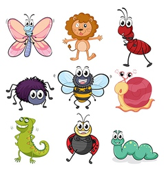 Various insects and animals vector image vector image