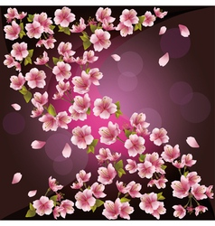 Background with sakura Japanese cherry tree vector image vector image