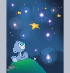 Adventures of little bear fantastic night vector