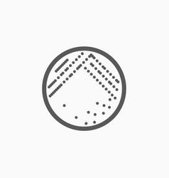 Bacteria in petri dish icon vector