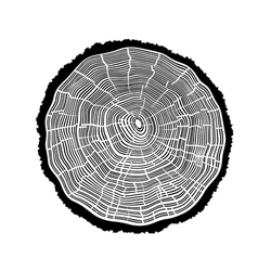 Rings of a tree with cracks vector image