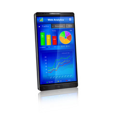 web analytics application on smartphone screen vector image