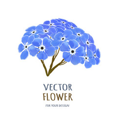 hand drawn realistic of forget vector image vector image
