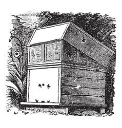 Beehive vintage engraving vector image vector image