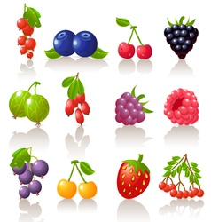 set of berry icons vector image vector image