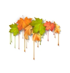 Autumn Dripping Paint Leaves vector
