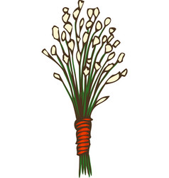 Dried grass bouquet vector