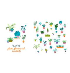 indoor home plants in ceramic pots seamless vector image