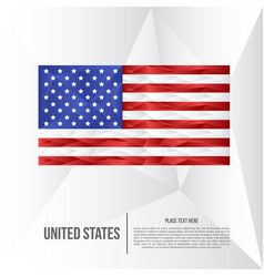 modern united states low poly background vector image