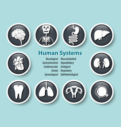 Set of human systems icon round glass cover vector