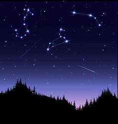 zodiac constellations flat vector image