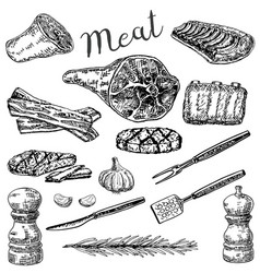 ink hand drawn sketch style meat products vector image