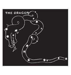 The dragon vintage vector