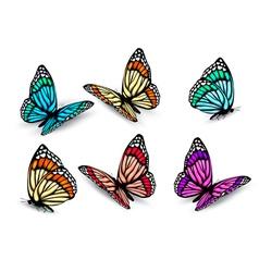 realistic butterflies set vector image