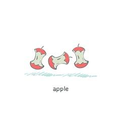 Apple core vector