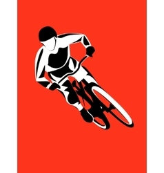 Mountain bike rider vector image