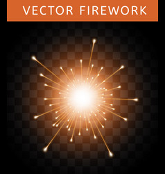 Bright colorful orange firework vector