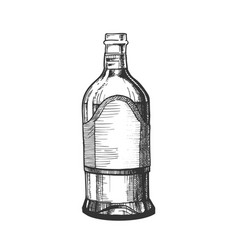 Closed tall classic mexican tequila bottle vector