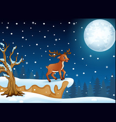 deer cartoon standing in th vector image