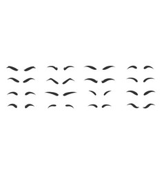 Eyebrows shapes set eyebrow shapes various types vector