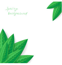 Leaves spring corner vector