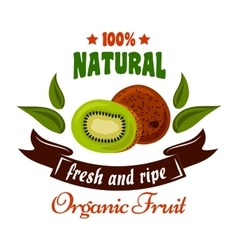 Natural organic fruits symbol with fresh kiwi vector