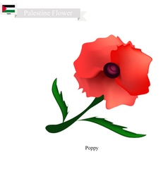 Red Poppies The Popular Flower of Palestine vector image