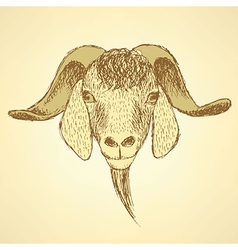 Sketch cute goat head in vintage style vector image