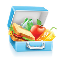 lunch box with sandwich apple vector image