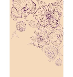 background with gentle peony vector image vector image