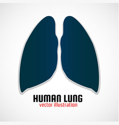 Human lungs with shadow on a white background vector