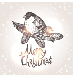 Christmas Card With Sketch Bullfinche vector image