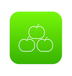 apples icon green vector image