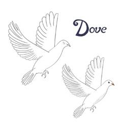 Educational game coloring book dove bird vector