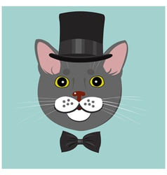elegant cat in top hat and bow tie vector image